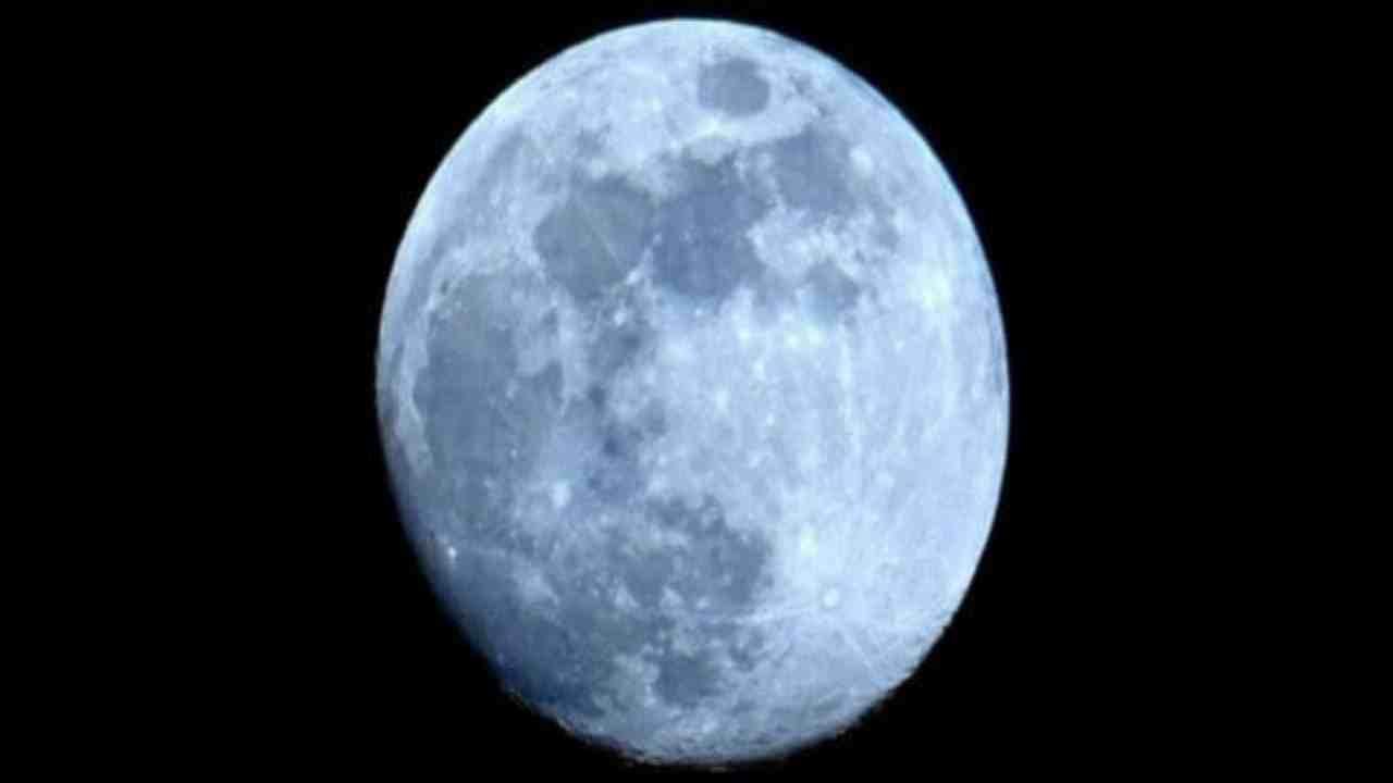 Luna forma Political24