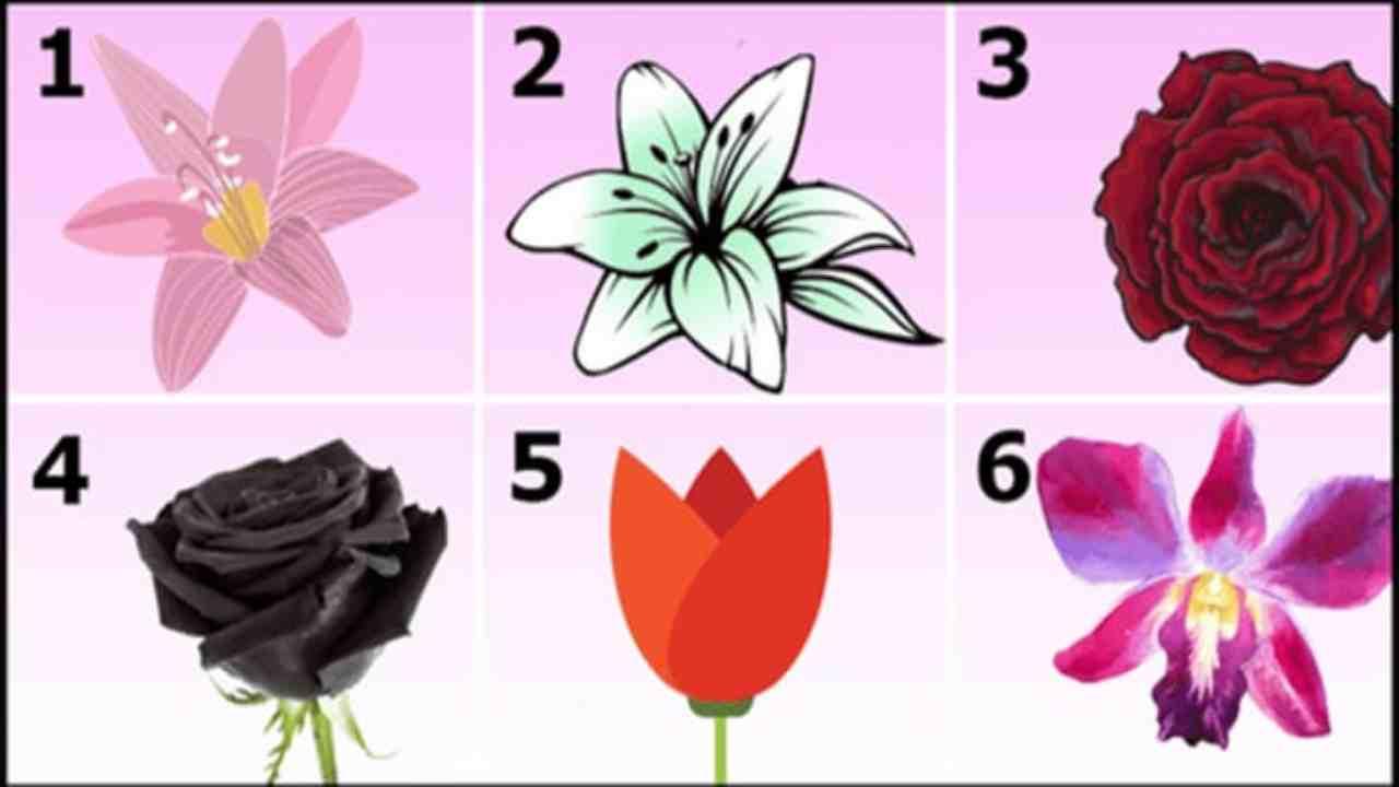 Test psicologico dei fiori-Political24